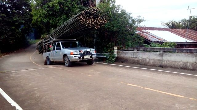 image pickup-galere-bambous
