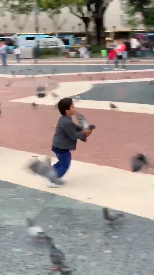 image enfant-lance-pigeons-fille