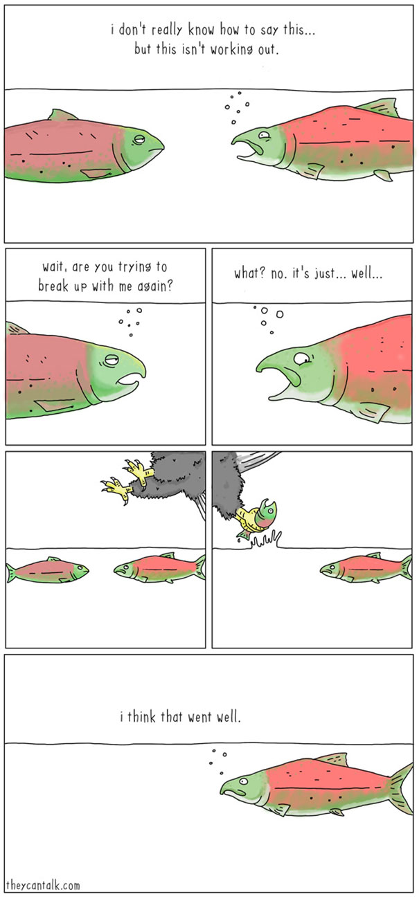 animaux-parler-13