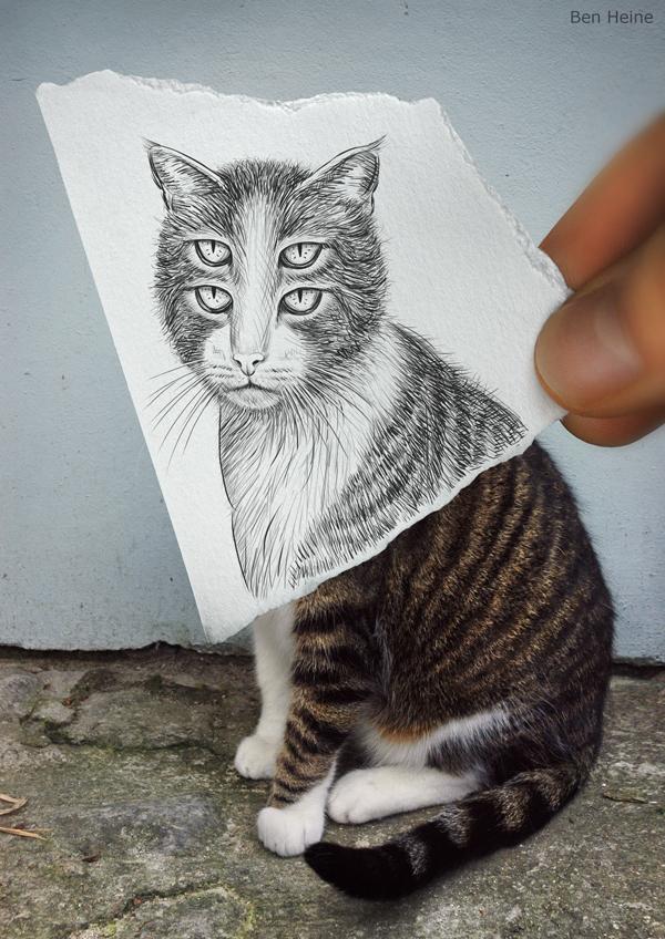 crayon-vs-image-08