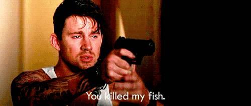 you-killed-fish