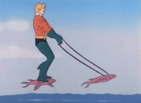 gif-dresser-poissons-volants