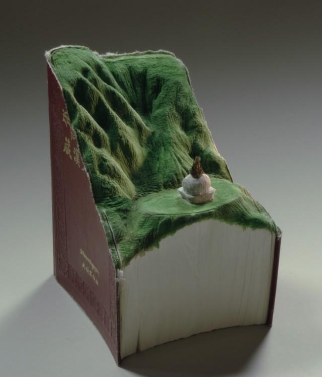 paysages-sculptes-livres-13