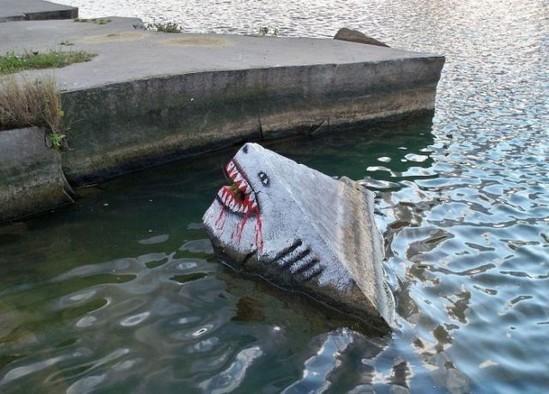 une-pierre-dequisee-requin