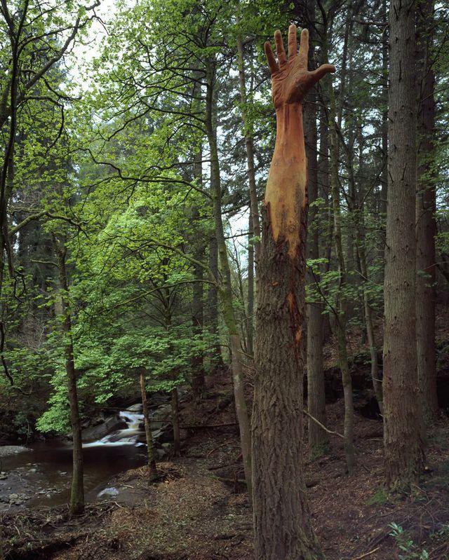 arbre-sculpture-main-aide
