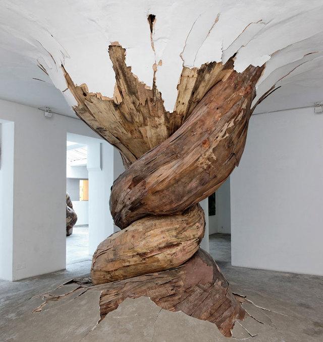 arbre-tordu