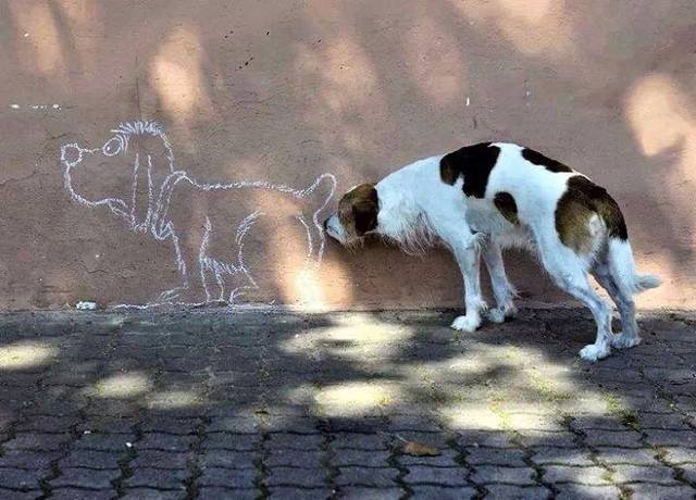 les-chiens-sont-cons