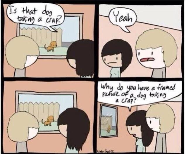 pourquoi-photo-chien-fait-caca