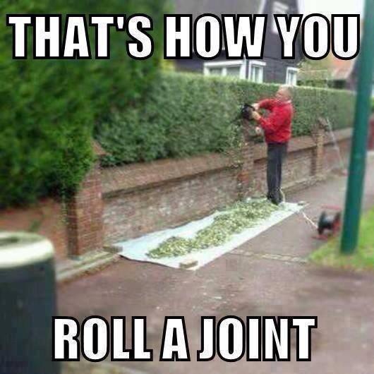 voila-comment-roule-joint