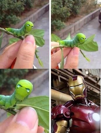 iron-worm