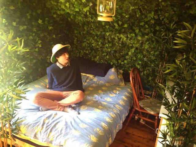chambre-decoree-plantes-vertes