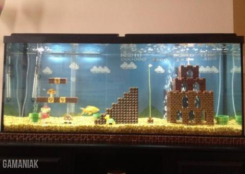 aquarium-monde-mario