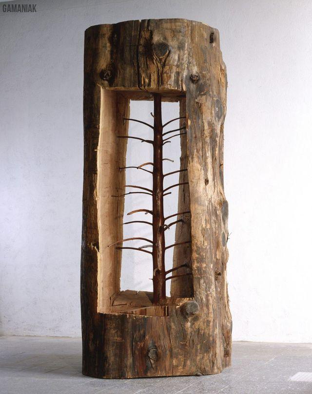 arbre-qui-renait-tronc