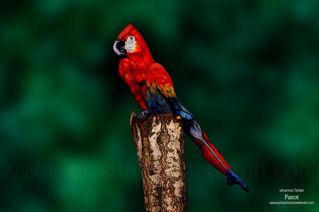 une-femme-qui-pose-tant-que-perroquet