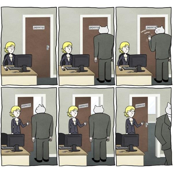 business-cat-porte-bureau