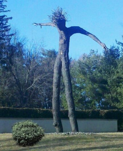 trouve-groot