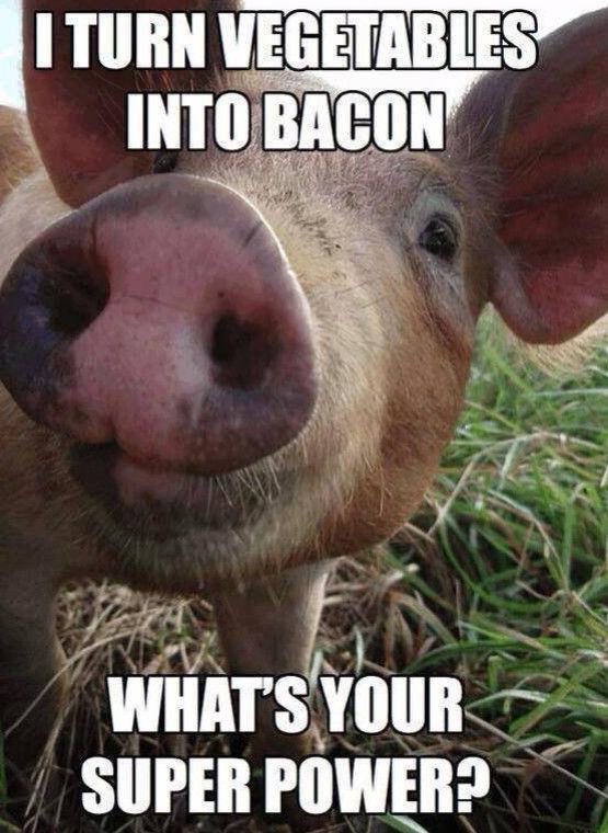 transforme-legumes-bacon-toi-cest-quoi-ton-pouvoir