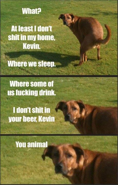 kevin-you-animal