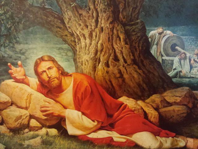 jesus-veux-quoi-mec-dormais