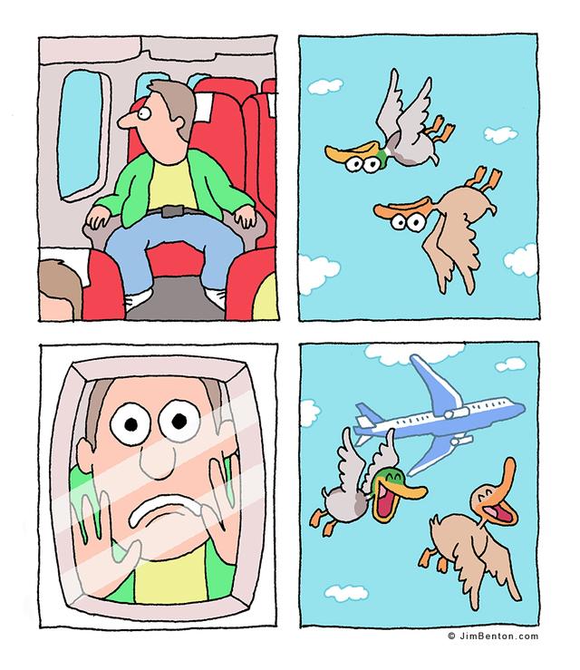 blague-canards-avion-envers