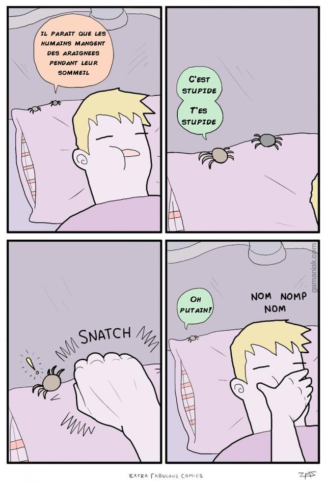 humains-araignees-sommeil