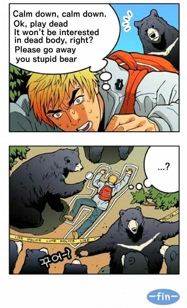 faire-mort-face-ours