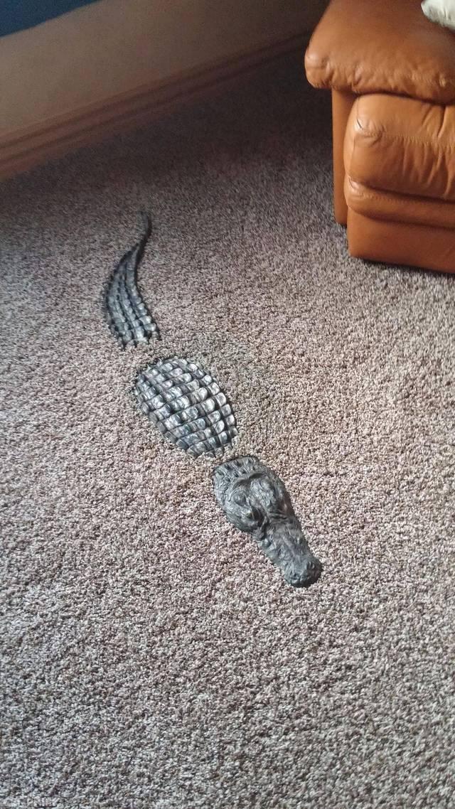 crocodile-moquette