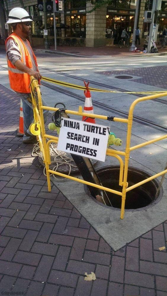 recherche-tortues-ninjas-cours