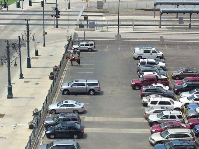 garer-son-cheval-parking