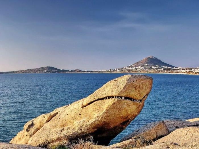 rocher-requin
