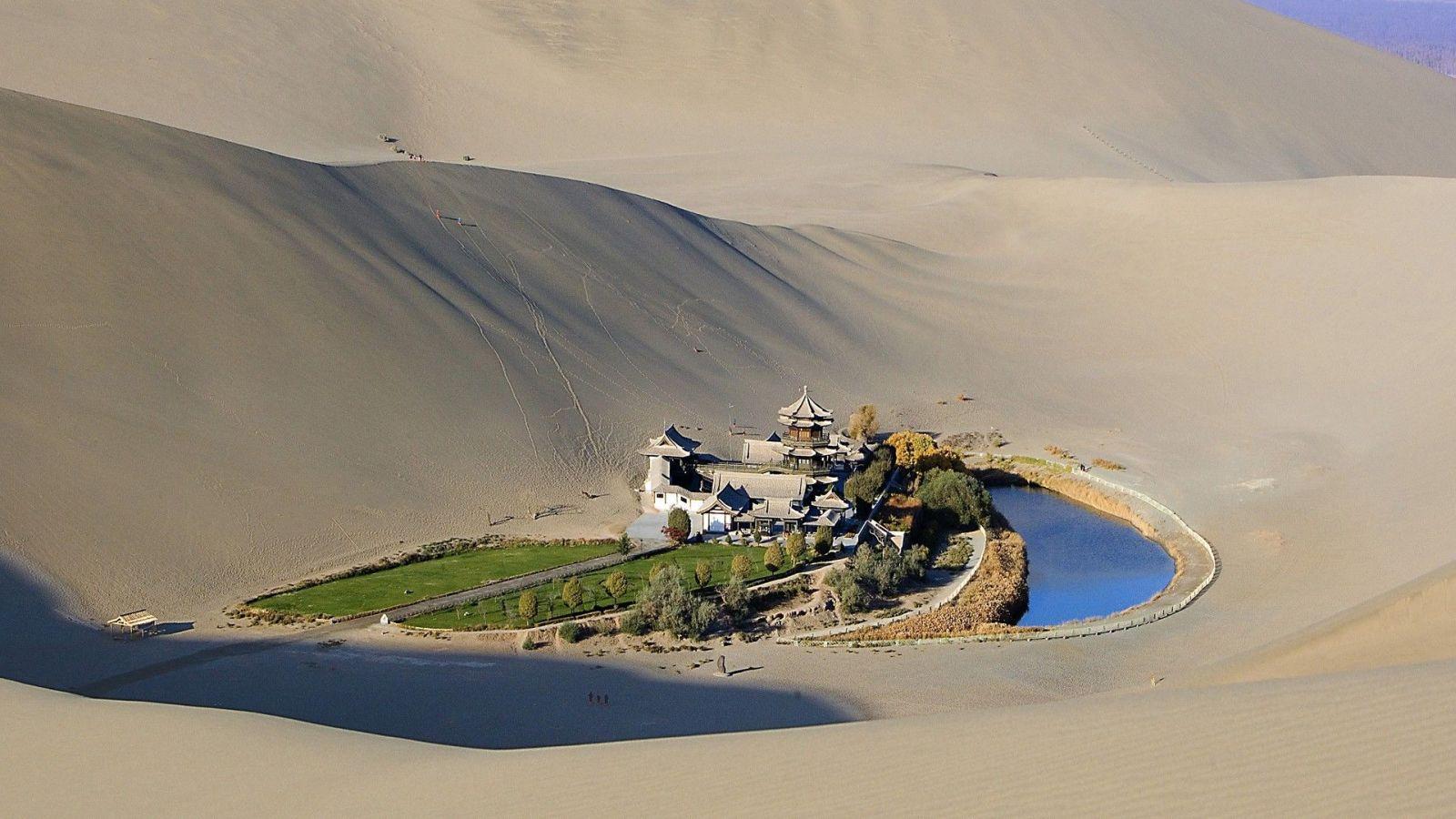 oasis-milieu-desert