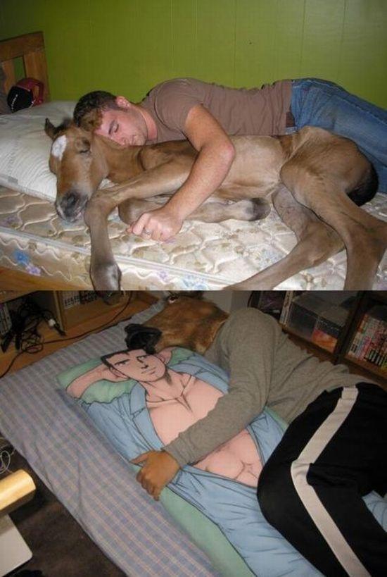 dormir-avec-cheval-linverse
