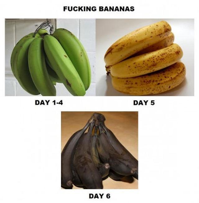 logique-des-bananes