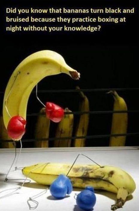 secret-sur-les-bananes