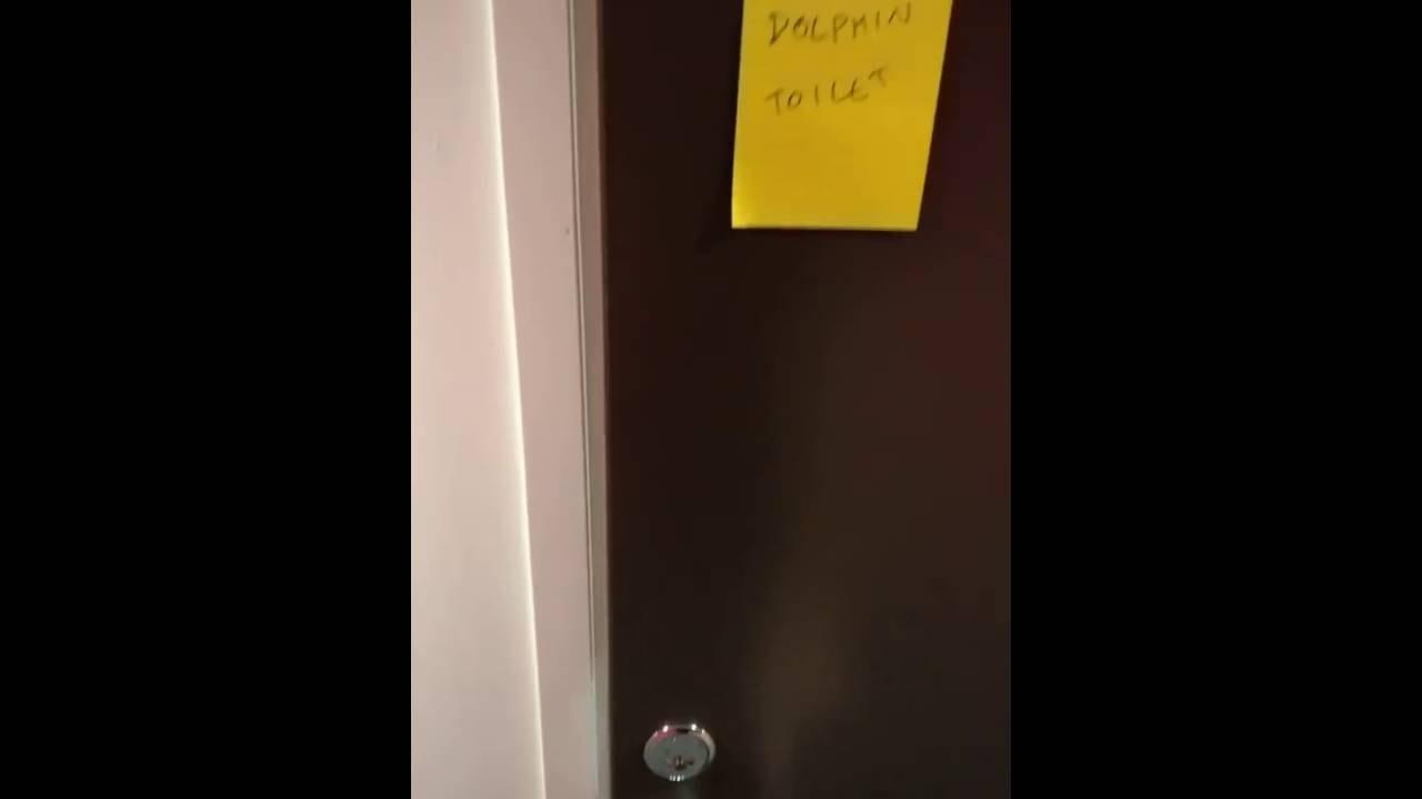 Toilettes pour dauphin for Porte qui grince